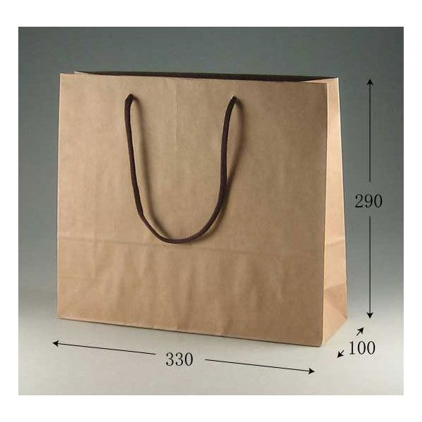 紙手提げ袋 カラーチャームバッグ 3才 クラフト 底ボール付 (巾330 マチ100 高さ290 アクリル紐) 10枚