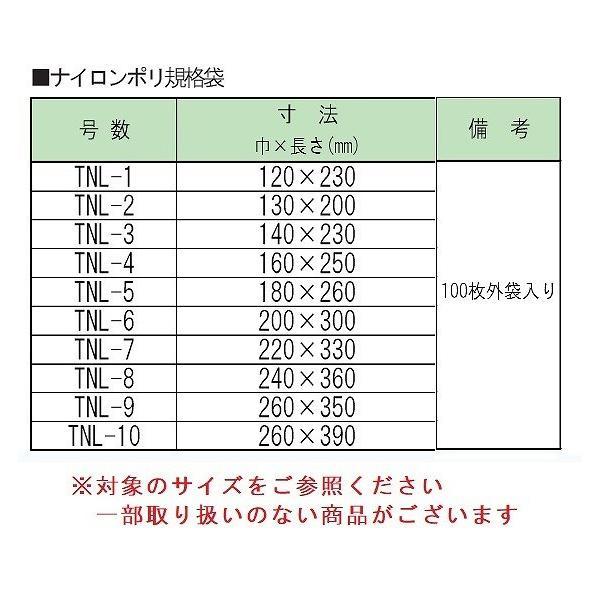 ナイロンポリ TNL-9 真空袋 100入|packagestock|02