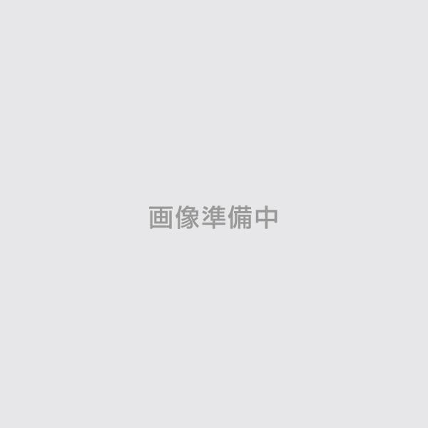 ライフ錆止21S 超速乾 赤錆 20kg(アトミクス/錆止め)