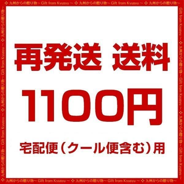 送料 1100円 送料無料