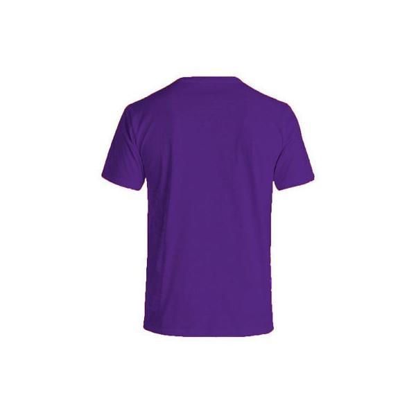 DGK Factory Tee in Purple