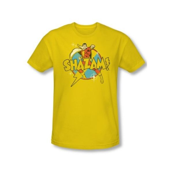 Dc Shazam Logo Adult Regular Fit T-Shirt