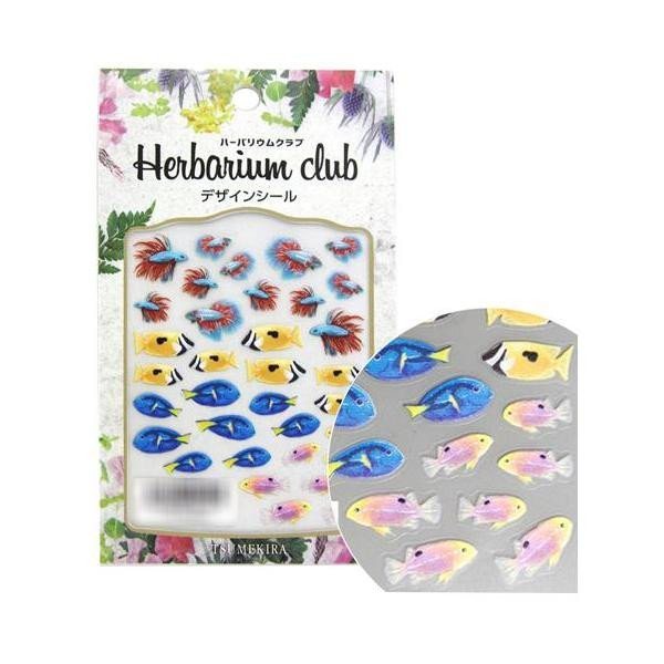 l返品不可lハーバリウムクラブ ハーバリウムシール 熱帯魚2 (両面印刷) HR-NTG-201