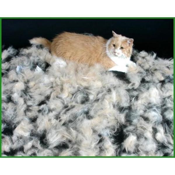 送料無料|ファーミネーター 大型猫 L 短毛種用|b03|panfamcom|05