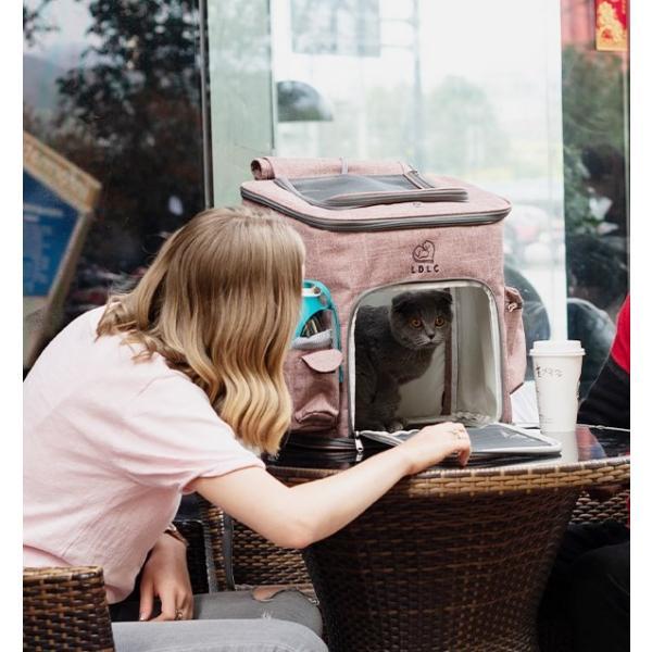 ペット キャリーバッグ リュック バッグ 猫 小型犬 ペットバッグ 大容量 多機能 便利 アウトドア お出かけ 持ち運び 散歩 通院 防災 避難 通気性|panni123|02
