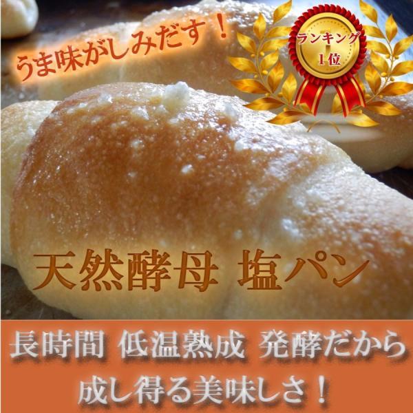 天然酵母 塩パン 10個 セット!|pannomorikurara