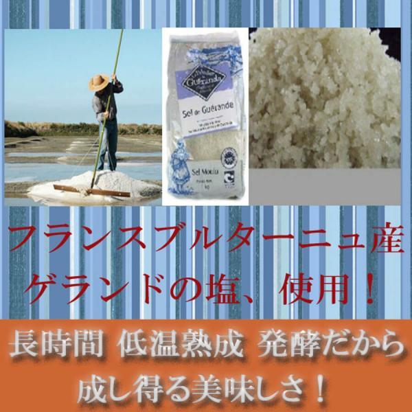 天然酵母 塩パン 10個 セット!|pannomorikurara|05