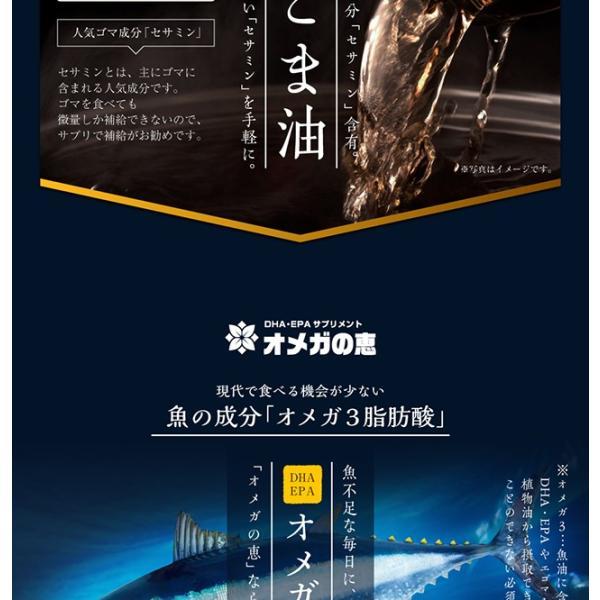 オメガ3 DHA EPA セサミンのサプリ GLP1 glp-1 『オメガの恵 60カプセル メール便』  青魚 亜麻仁油 エゴマ油 サプリメント 1000円ポッキリ|papamama|05