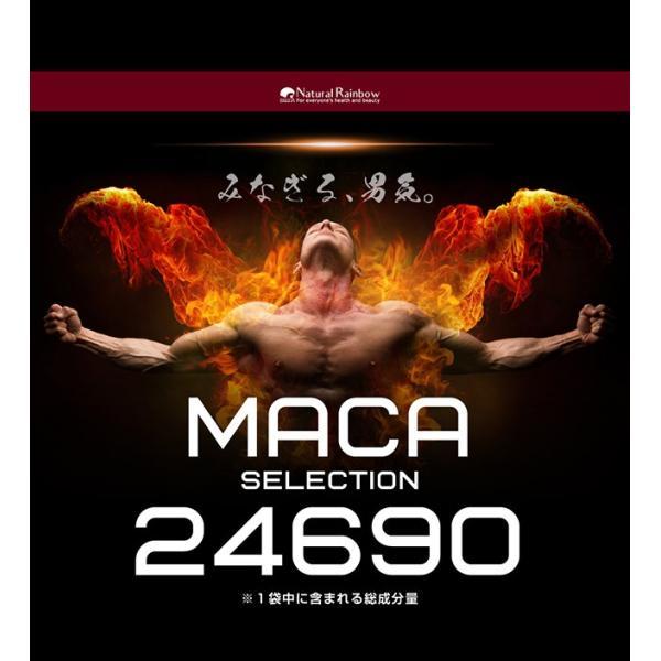 マカ7,485mg高配合 マカ セレクション 93粒 メール便 サプリ サプリメント クラチャイダム6,510mg アルギニン シトルリン papamama 11