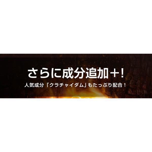 マカ7,485mg高配合 マカ セレクション 93粒 メール便 サプリ サプリメント クラチャイダム6,510mg アルギニン シトルリン papamama 06