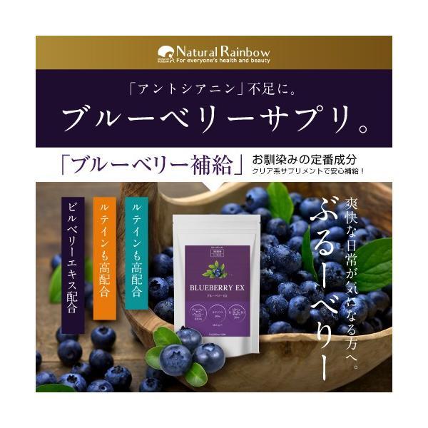 ブルーベリーEX 30粒 メール便 ブルーベリー サプリ ルテイン ビルベリー サプリメント|papamama
