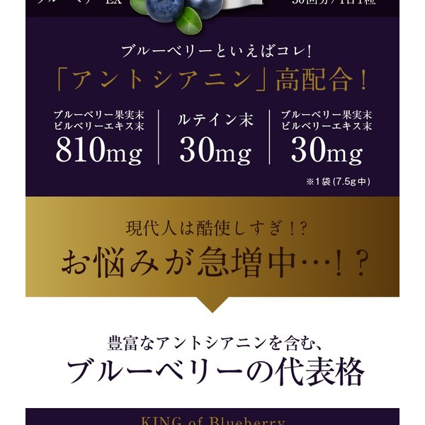 ブルーベリーEX 30粒 メール便 ブルーベリー サプリ ルテイン ビルベリー サプリメント|papamama|04