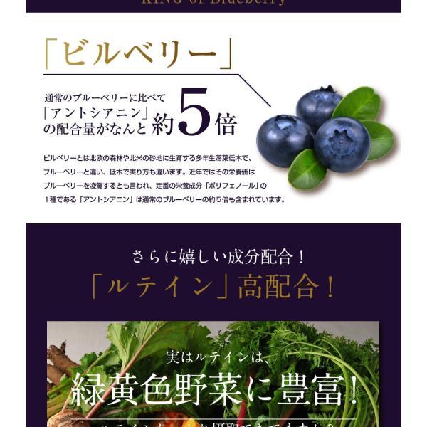 ブルーベリーEX 30粒 メール便 ブルーベリー サプリ ルテイン ビルベリー サプリメント|papamama|05