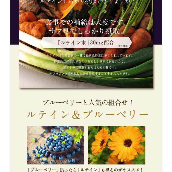 ブルーベリーEX 30粒 メール便 ブルーベリー サプリ ルテイン ビルベリー サプリメント|papamama|06