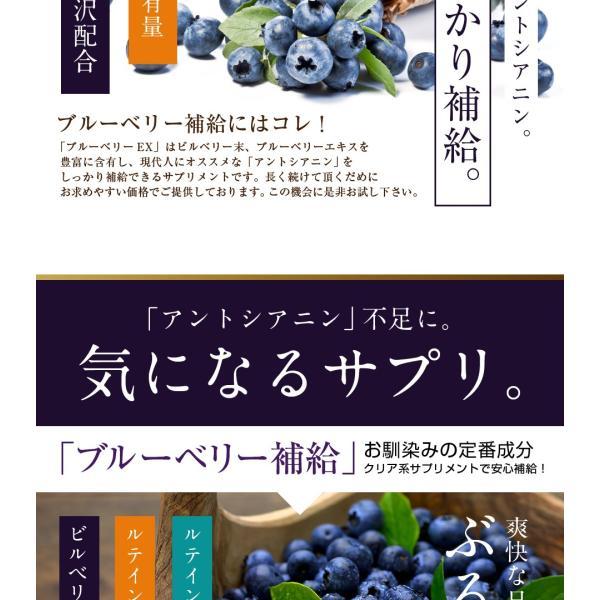 ブルーベリーEX 30粒 メール便 ブルーベリー サプリ ルテイン ビルベリー サプリメント|papamama|09