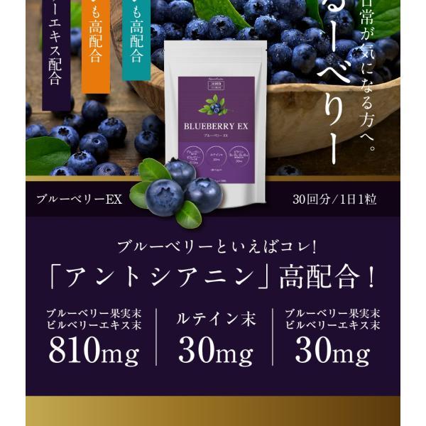 ブルーベリーEX 30粒 メール便 ブルーベリー サプリ ルテイン ビルベリー サプリメント|papamama|10