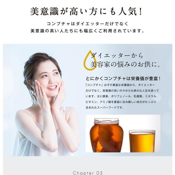 コンブチャ 極KOMBUCHA 60粒 メール便 サプリ オリゴ糖 紅茶キノコ 紅茶 サプリメント|papamama|04