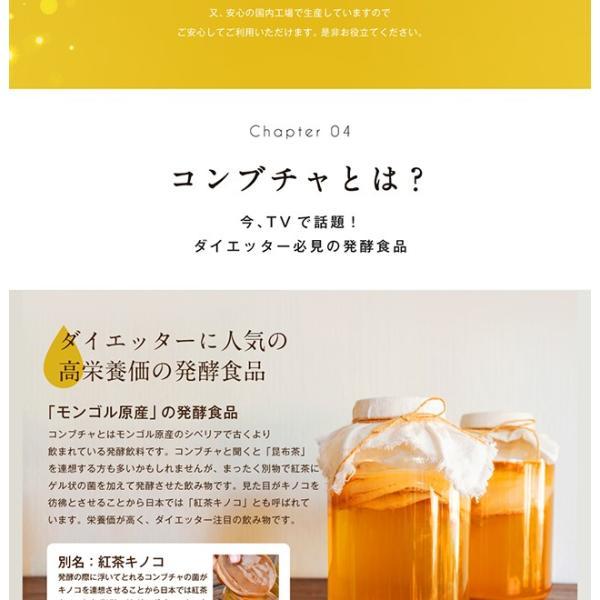 コンブチャ 極KOMBUCHA 60粒 メール便 サプリ オリゴ糖 紅茶キノコ 紅茶 サプリメント|papamama|06