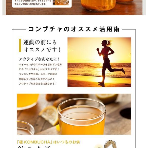 コンブチャ 極KOMBUCHA 60粒 メール便 サプリ オリゴ糖 紅茶キノコ 紅茶 サプリメント|papamama|07