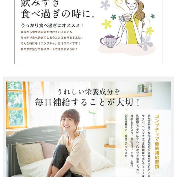 コンブチャ 極KOMBUCHA 60粒 メール便 サプリ オリゴ糖 紅茶キノコ 紅茶 サプリメント|papamama|08
