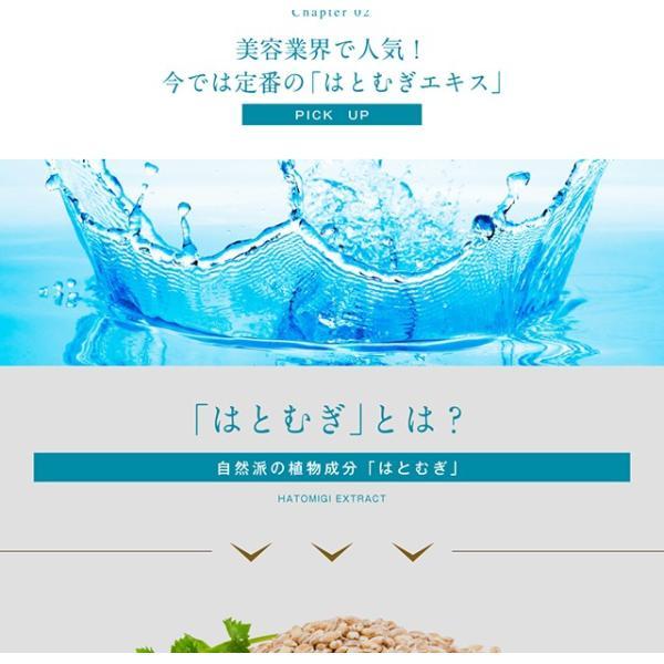 濃いハトムギエキス 90粒 メール便 栄養機能食品 papamama 04