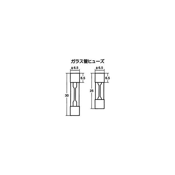 【9/19限定!ポイント最大26倍】TOOL170 ガラス管ヒューズ 30mm 10A ProTOOLs(プロツールス) 1箱(10個入)
