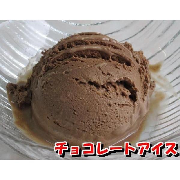 業務用アイスクリーム 高級チョコレートアイス 2リットル