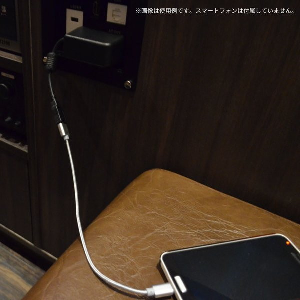 USB ACアダプタ DC5V 2.5A 急速充電 pascalstore 07