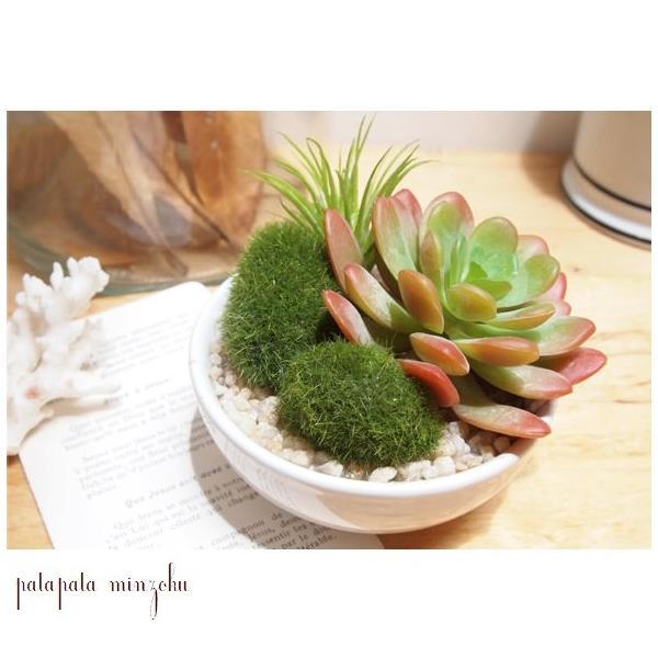 サキュレントリフレリウム C アーティフィシャルグリーン 観葉植物 植物 造花 ディスプレイ 光触媒 店舗什器 空気清浄 インテリア オブジェ|patapataminzoku