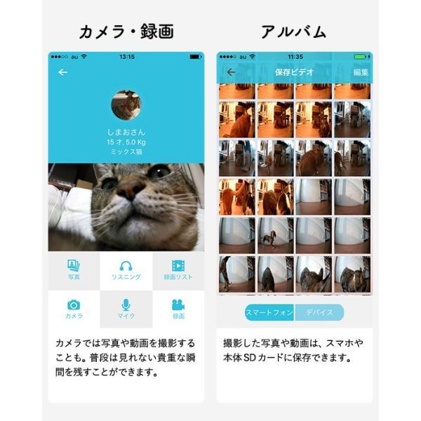 (送料無料)犬猫用 スマホ連動型 自動給餌器 カリカリマシーン SP / 自動餌やり器 うちのこエレクトリック製 ペット 餌 *z-karikari-sp*|patie|12