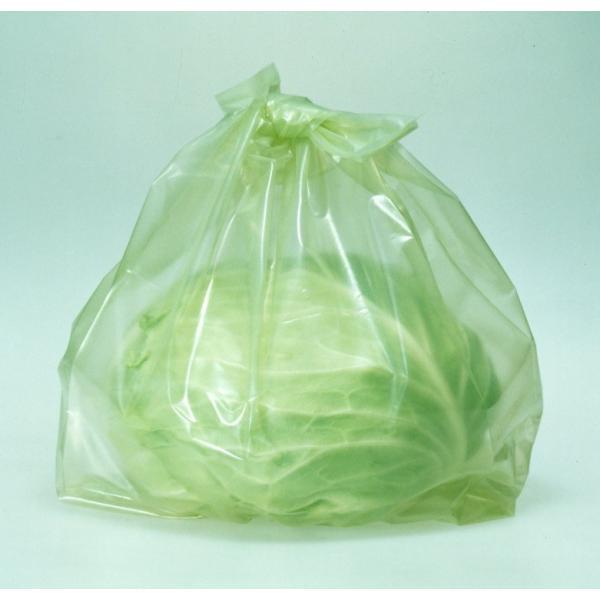 野菜の鮮度を保つ 野菜げんき 鮮度保持袋 (大) 5枚入り|pc-zakka|02