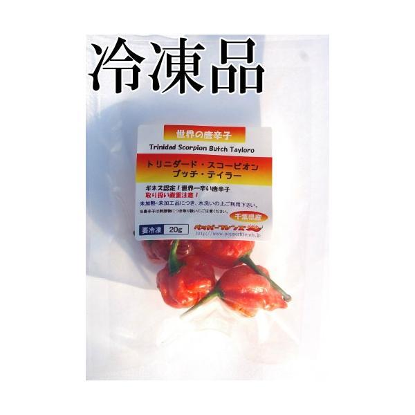国産 激辛生唐辛子 トリニダード・スコーピオン・ブッチ・テイラー 冷凍品 20g 千葉県産
