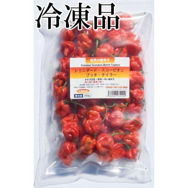 国産 激辛生唐辛子 トリニダード・スコーピオン・ブッチ・テイラー 冷凍品 250g 千葉県産