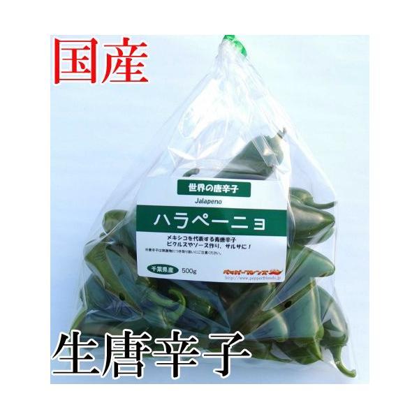 国産 生唐辛子  ハラペーニョ グリーン  500g 生鮮品 千葉県産