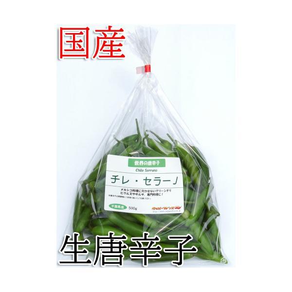 国産 生唐辛子 セラーノ グリーン  500g 生鮮品 千葉県産