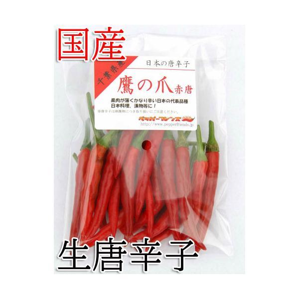 国産 生唐辛子 鷹の爪 赤唐 50g 生鮮品 千葉県産