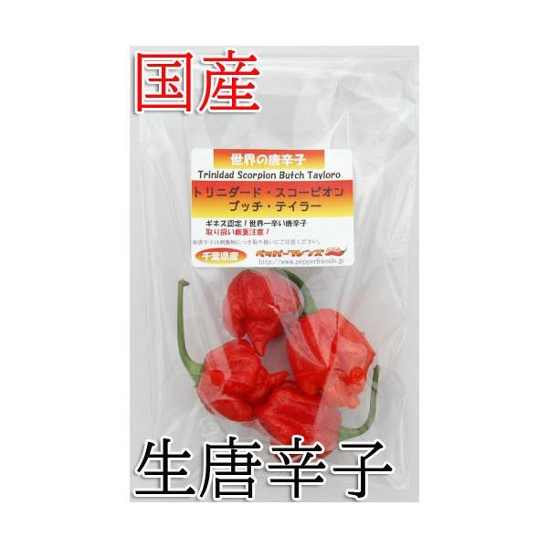 国産 激辛生唐辛子 トリニダード・スコーピオン・ブッチ・テイラー 20g 生鮮品 千葉県産