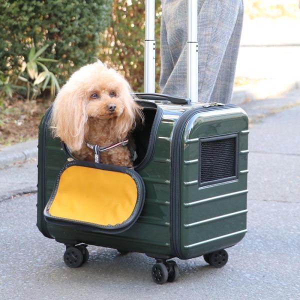 キャリーケース キャスター付き ハードキャリー 犬 猫 ペット キャスター付き キャリーバッグ 丈夫 小型犬 カーキ キャリー 軽い 4輪 四輪 送料無料 1年保証