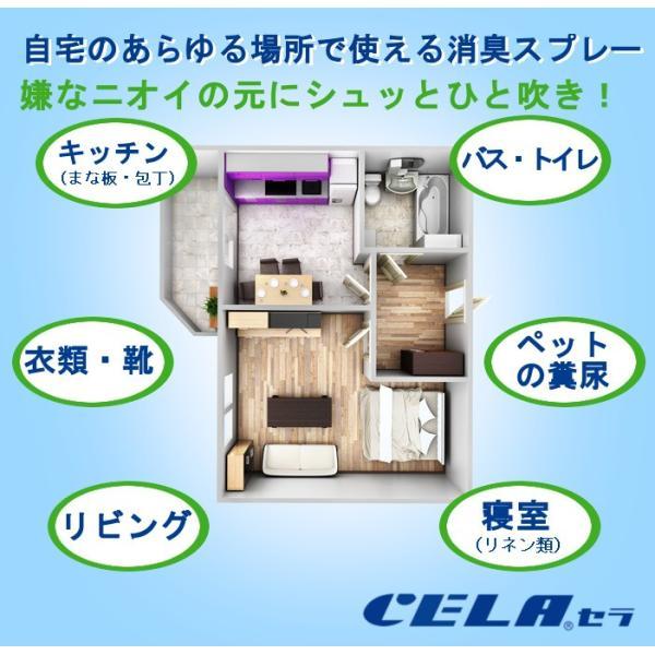次亜塩素酸水 セラ水 CELA  50ppm インフルエンザ 予防 ノロウィルス 除菌 消臭 消毒 スプレー ノンアルコール 20リットル 1箱(コックなし)|petfan-sheri|02