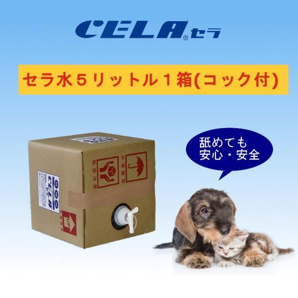 次亜塩素酸水 セラ水 CELA 50ppm インフルエンザ 予防 ノロウィルス 除菌 消臭 消毒 スプレー ノンアルコール 5リットル 1箱(コック付)|petfan-sheri
