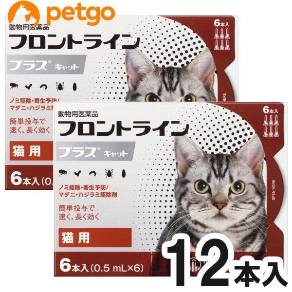 【2箱セット】猫用フロントラインプラスキャット 6本(6ピペッ...