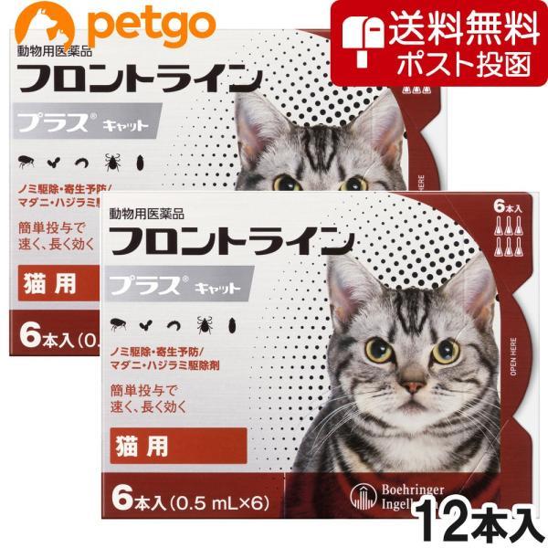 【ネコポス(同梱不可)】【2箱セット】猫用フロントラインプラスキャット 6本(6ピペット)(動物用医薬品)|petgo