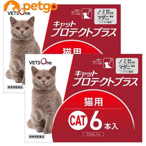 【2箱セット】ベッツワン キャットプロテクトプラス 猫用 6本 (動物用医薬品)|petgo