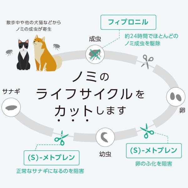【2箱セット】ベッツワン キャットプロテクトプラス 猫用 6本 (動物用医薬品)|petgo|03