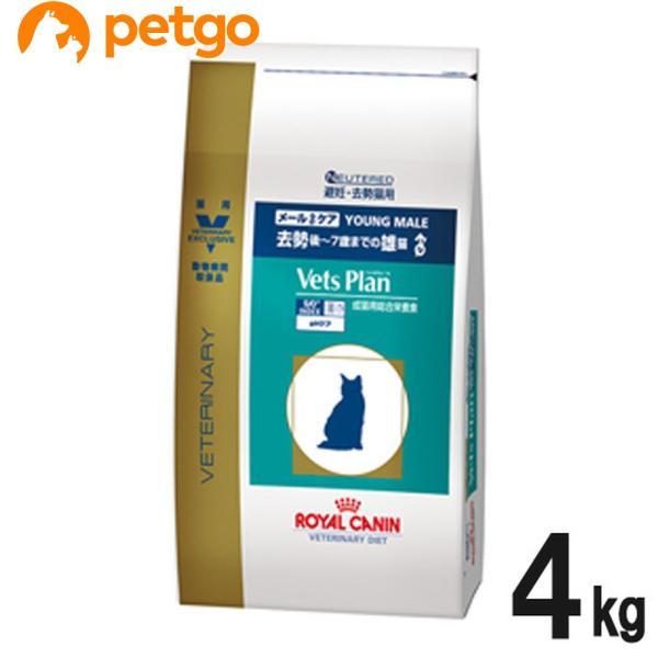 ロイヤルカナン ベッツプラン 猫用 メールケア 4kg petgo