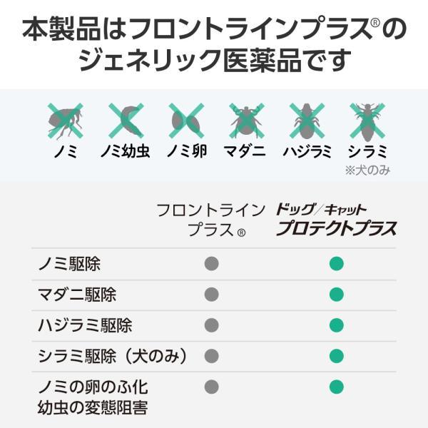 【10%OFFクーポン】ベッツワン キャットプロテクトプラス 猫用 6本 (動物用医薬品)|petgo|04