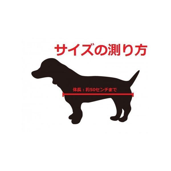 ペット スリング 犬 猫 兼用 飛び出し防止用リードきで安心お出掛け|petit-colle|03