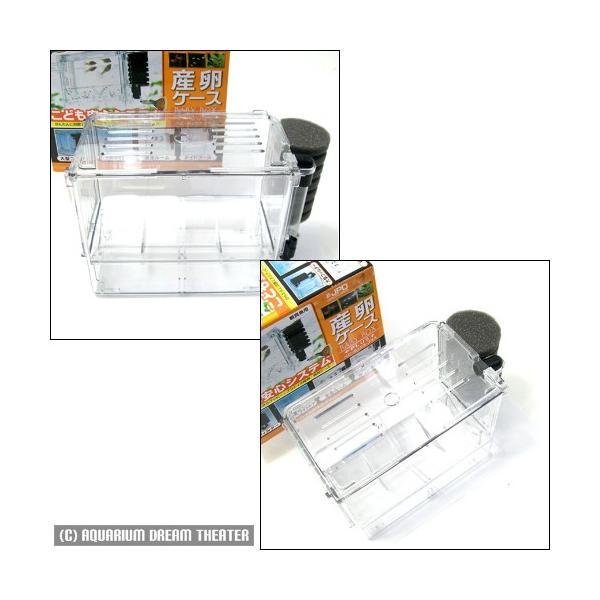 産卵箱 ベビーボックス プラス 【産卵箱 隔離 ベビーボックスプラス】 petitem 02
