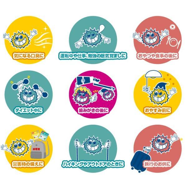 FuzzyRock ピーチ味 キシリトール 100% キャンディー タブレット あめ アメ こども 虫歯 甘い 歯磨き ノンシュガー 糖類 オフ 防災 歯 矯正|petittomall|11