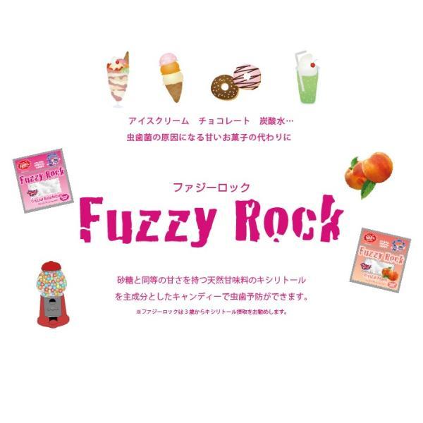FuzzyRock ピーチ味 キシリトール 100% キャンディー タブレット あめ アメ こども 虫歯 甘い 歯磨き ノンシュガー 糖類 オフ 防災 歯 矯正|petittomall|05